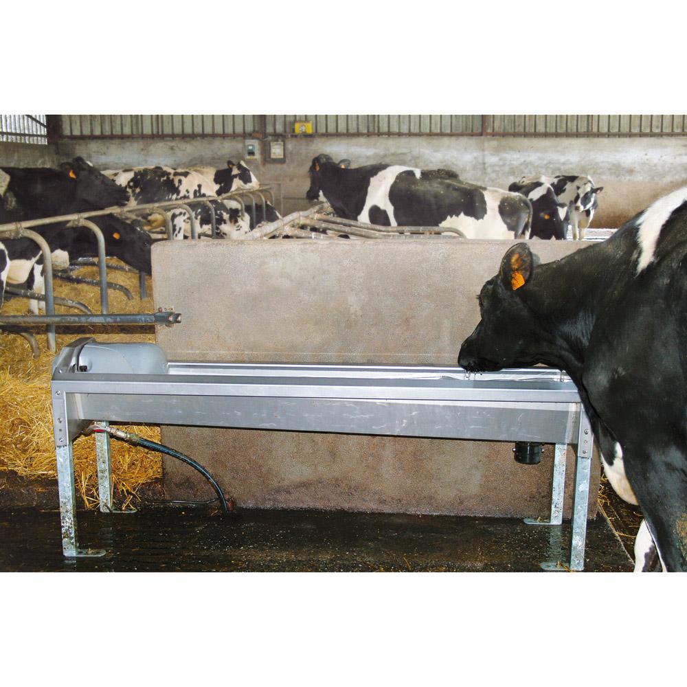 ABLAUFTRÄNKEN GV 230 für Milchkühe